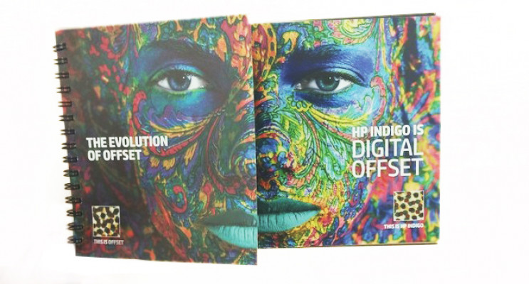 This fold-out features Sappi Flo Digital Gloss 100# Cover paper, with conventional offset press in four-color.