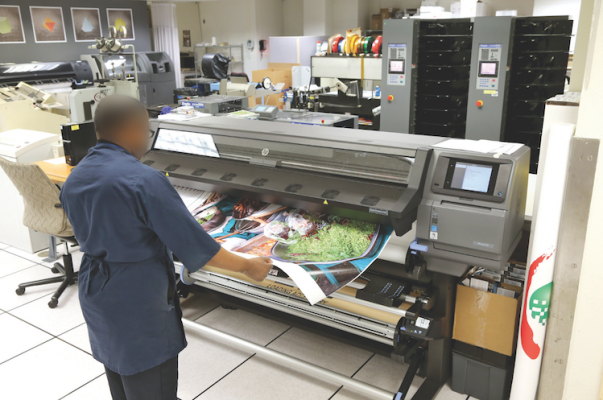 An IPS employee outputs a poster on the in-plant's HP Latex 370 wide-format digital printer.