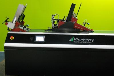 PI0816_NPRG-Pineberry