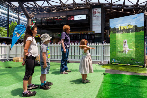 Lost Dogs' Home, Fetch motion recognition, JCDecaux Australia, Dec 2016 (Click photo for video)