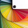 The Power of Color in Communication