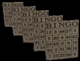 Bingo-Otto's Nightwatch
