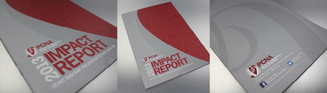 DESIGNING AND PRINTING WITH METALLIC INK: Annual Report