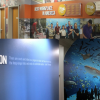 6 Reasons to Add Environmental Graphics to Your Office