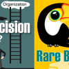 The Decision: Business Organization Implementation