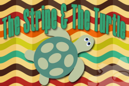 Stripe and Turtle business