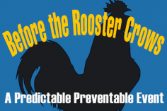 Before Rooster Crows systems