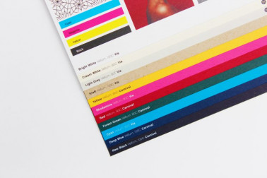 This line expansion consists of new colors — Bright White, Cream White, Light Gray, and Kraft.