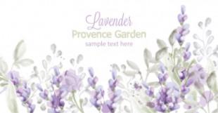 lavendar cards