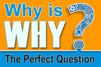 the perfect question to ask in business