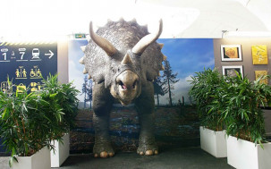 METROPOLE Dino