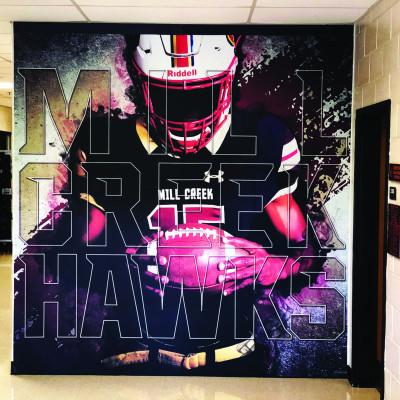 Hawks Graphics